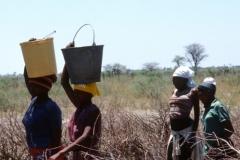Bushwomen