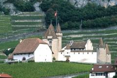 Chateau Aigle
