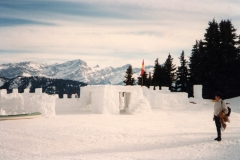 Solacyre Ice Castle