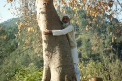 Man-who-hugs-trees