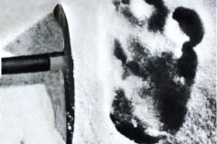 Shipton's imprint